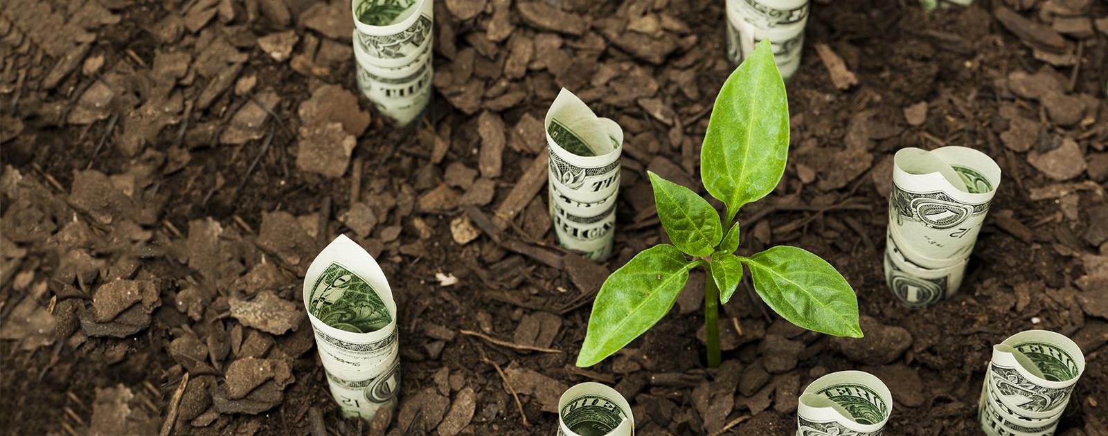 Quelle finance pour un monde solidaire ?
