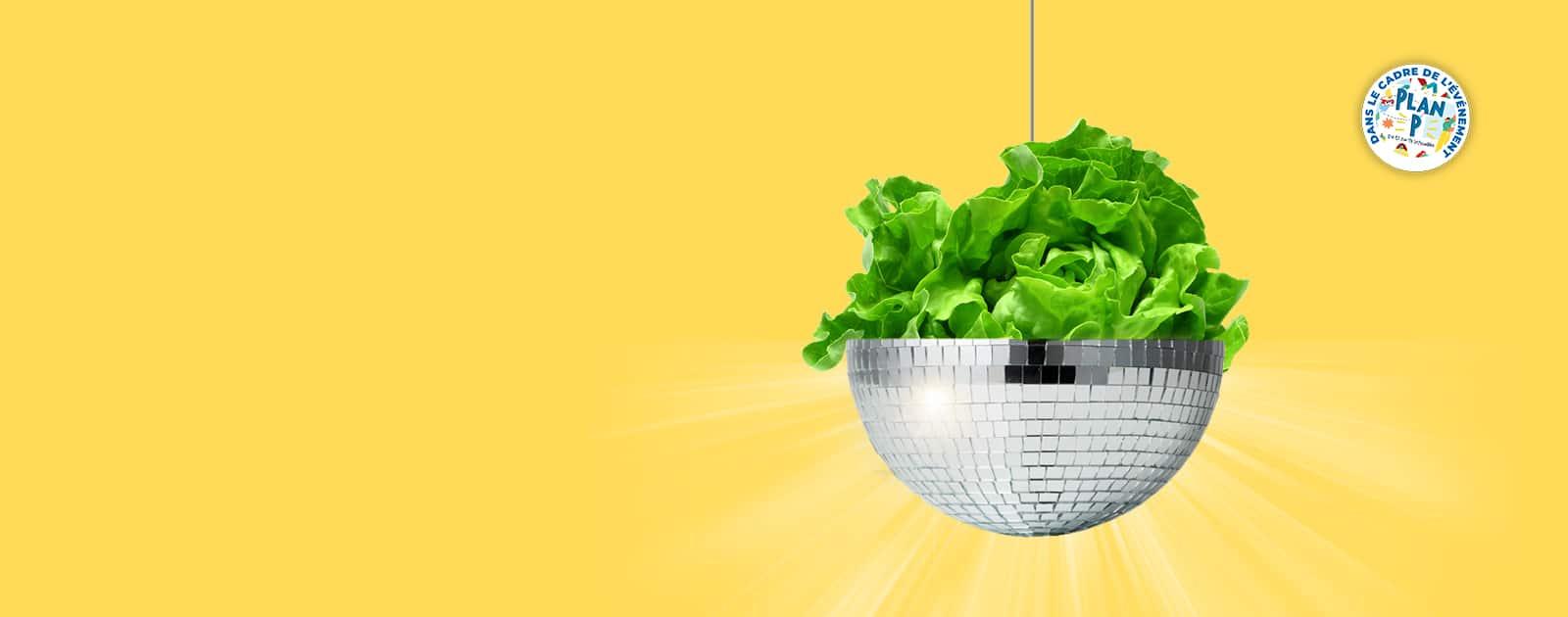 Crémaillère Disco Salade