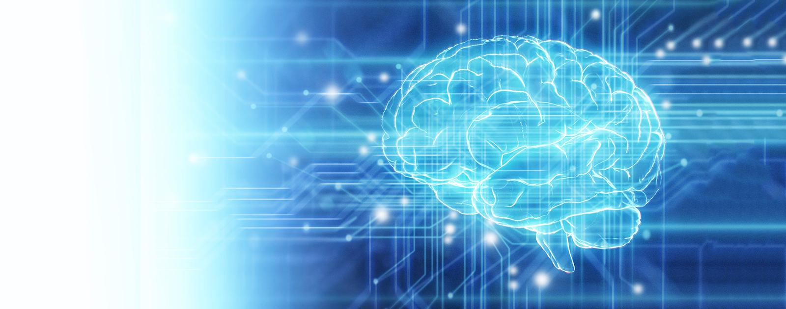Suffit-il d'avoir un cerveau pour apprendre ?